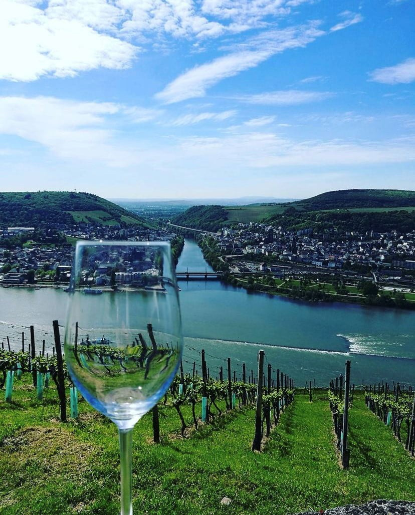Wines of Germany Online Tasting